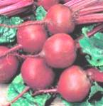 Raw Beet Juice A Great Cleanser Of The Body
